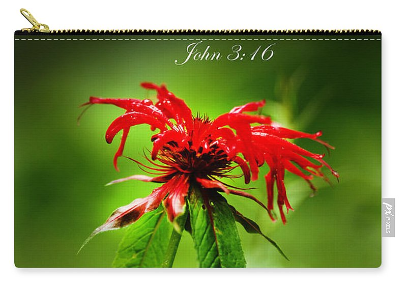Red Flower Carry-all Pouch featuring the photograph A Mountain Flower John 3 16 by Randall Branham