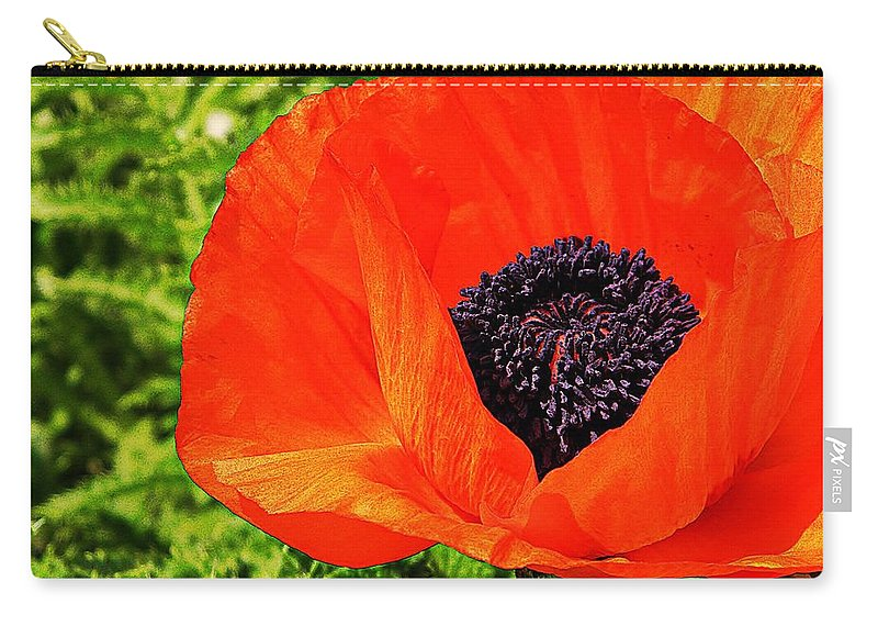 Poppy Carry-all Pouch featuring the photograph A Peek Inside by Chris Berry