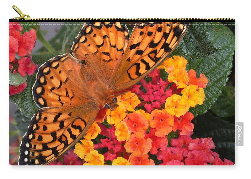 Butterfly Carry-all Pouch featuring the photograph A Quick Snack by Shane Bechler