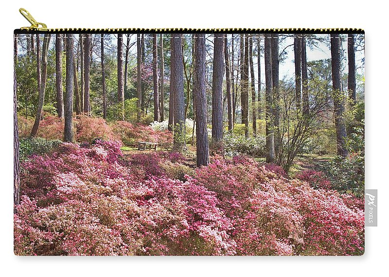 8211 Carry-all Pouch featuring the photograph A Quiet Spot In The Woods by Gordon Elwell
