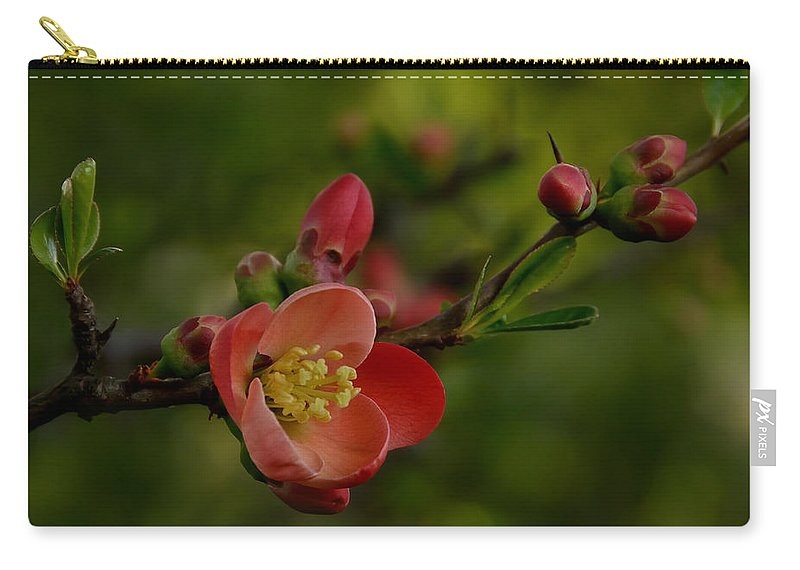White Carry-all Pouch featuring the photograph A Red Flower by TouTouke A Y