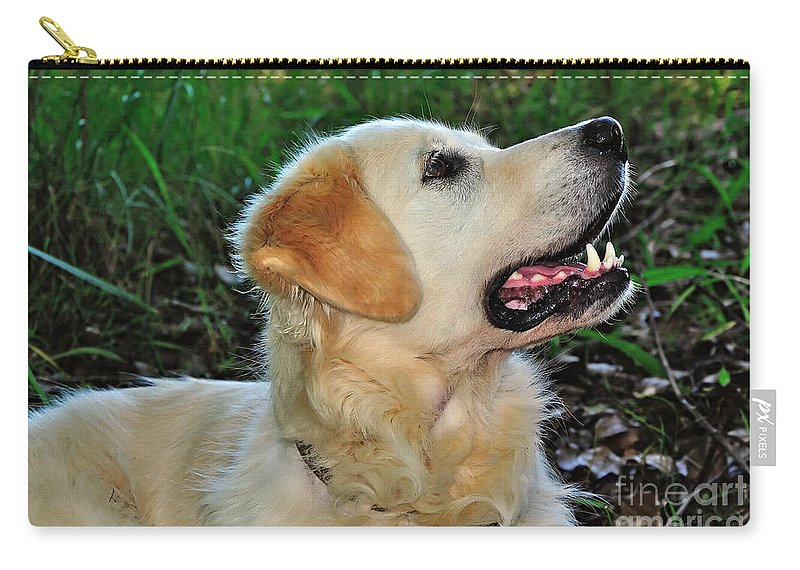 Photography Carry-all Pouch featuring the photograph A Retriever's Loving Glance by Kaye Menner