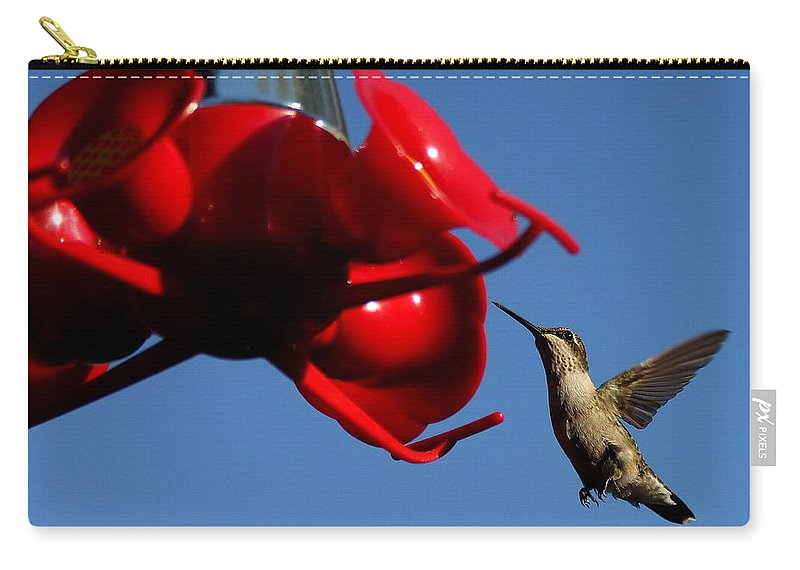 Birds Carry-all Pouch featuring the photograph A Return Customer by Reid Callaway