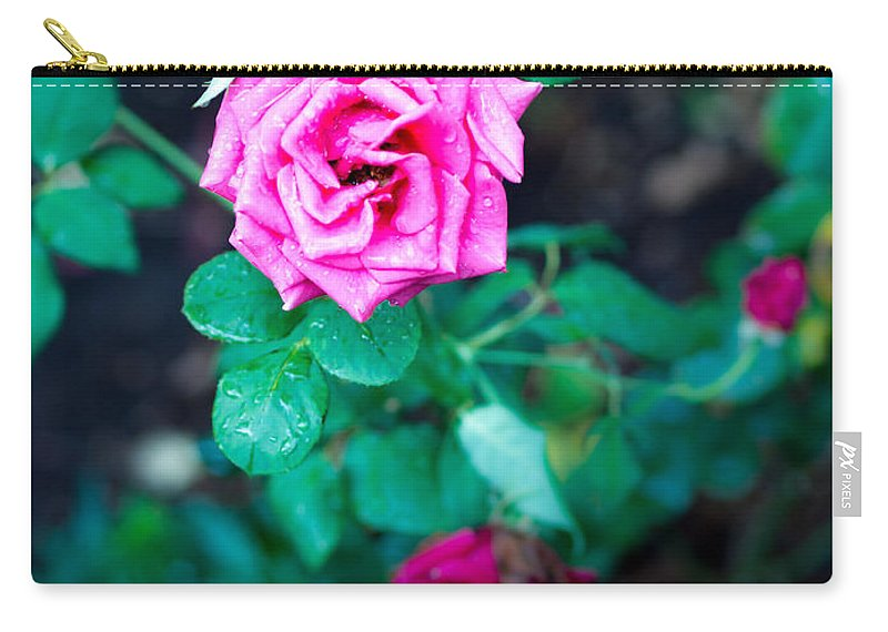 Rose Carry-all Pouch featuring the photograph A Rose Blooms by Kaleidoscopik Photography