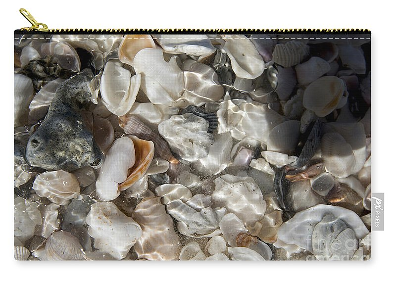 Sea Shells Carry-all Pouch featuring the photograph A Sheller's View by Terri Winkler