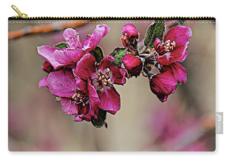 Spring Carry-all Pouch featuring the photograph A Sign Of Spring by Charles Muhle