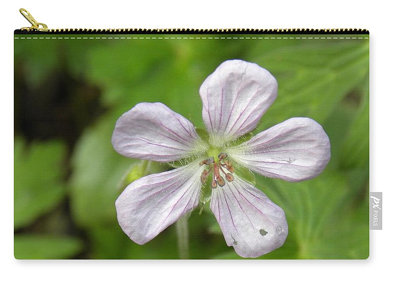 Wildflower Carry-all Pouch featuring the photograph A Single Teardrop by Annie Adkins