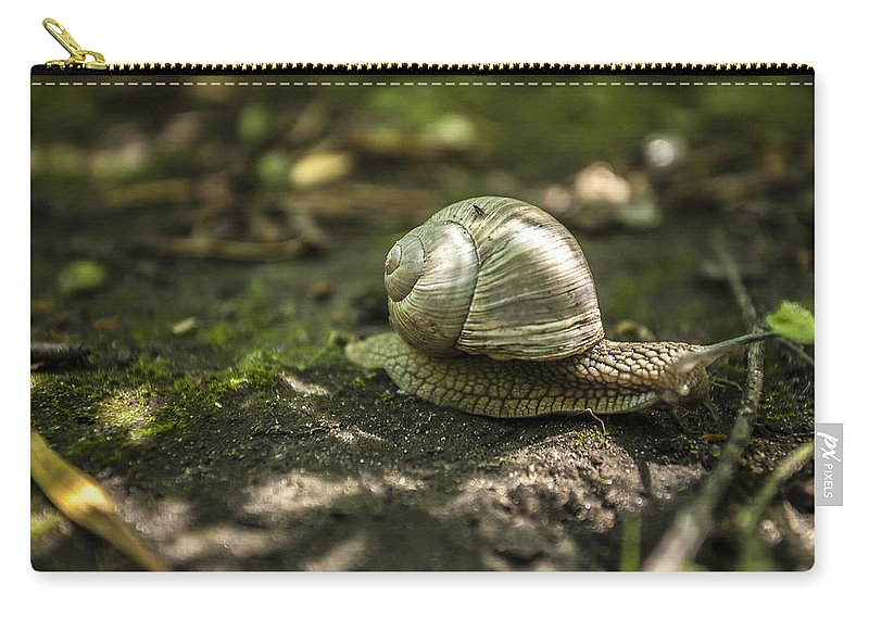 Www.cjschmit.com Carry-all Pouch featuring the photograph A Snail's Pace by CJ Schmit