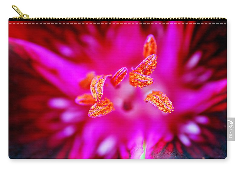 A Splash Of Colour Carry-all Pouch featuring the photograph A Splash Of Colour by Wendy Wilton