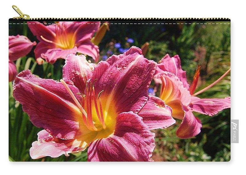 Lilies Carry-all Pouch featuring the photograph A Splash Of Lilies by Jane Harris