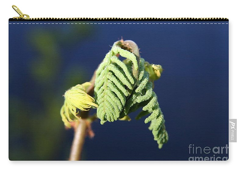 Leaf Carry-all Pouch featuring the photograph A Spring Beginning by Neal Eslinger