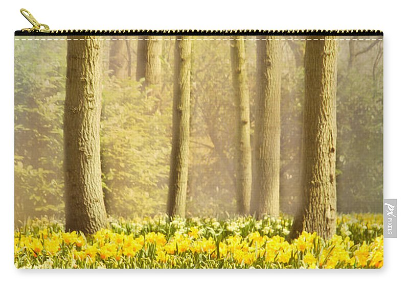 Forest Carry-all Pouch featuring the photograph A Spring Day by Jasna Buncic