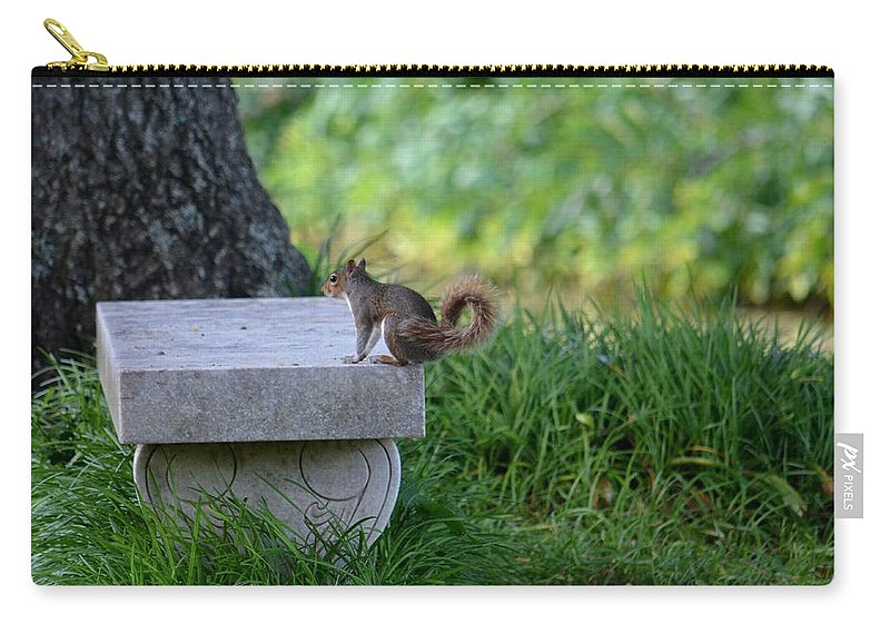 A Squirrel's Day Out Carry-all Pouch featuring the photograph A Squirrel's Day Out by Maria Urso