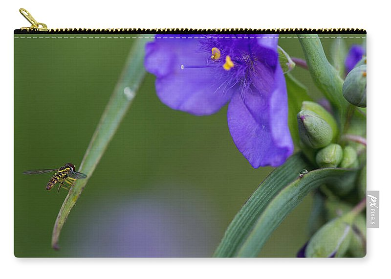 A Tiny Visitor Carry-all Pouch featuring the photograph A Tiny Visitor by Dale Kincaid
