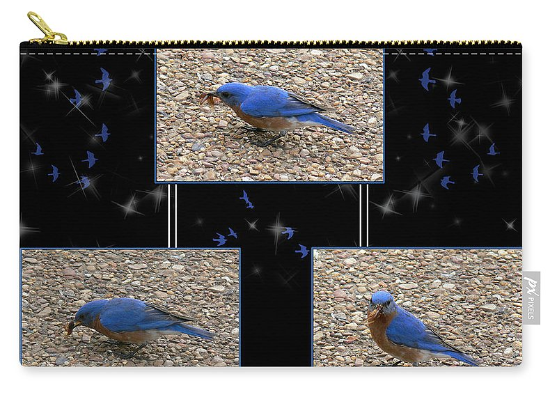 Bluebird Carry-all Pouch featuring the photograph A Typical Eastern Bluebird's Lunch - Featured In Comfortable Art Group by Ericamaxine Price