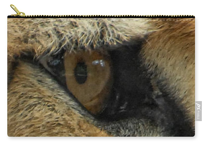 Cheetah Carry-all Pouch featuring the photograph A View To A Kill by Donna Blackhall
