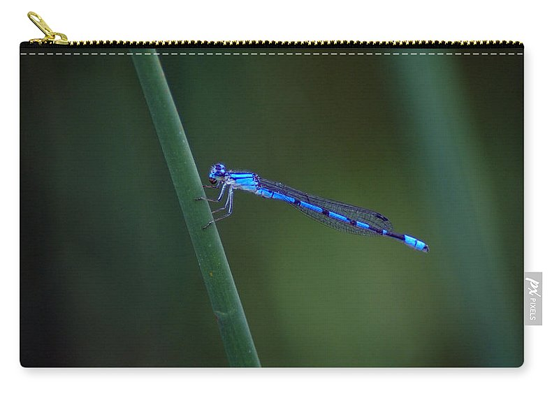 Dragonfly Carry-all Pouch featuring the photograph A Vivid Dancer Dragonfly by Ben Upham III