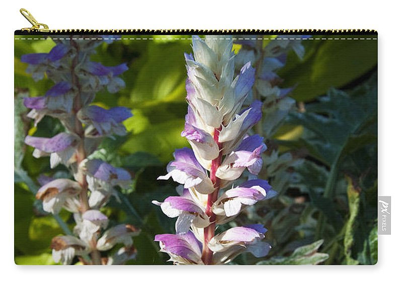 Bear's Breeches Carry-all Pouch featuring the photograph Acanthus Flower by Paul Cannon