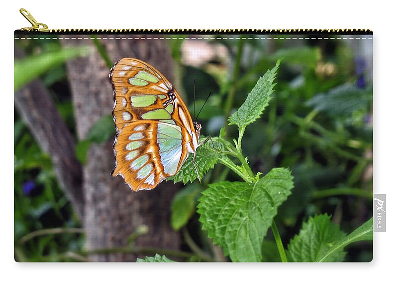 Butterfly Carry-all Pouch featuring the photograph Admiring The Garden by Thomas Woolworth