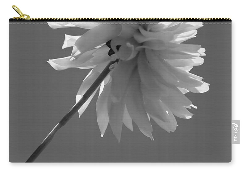 Dahlia Carry-all Pouch featuring the photograph Adored In Bw by Jeanette C Landstrom