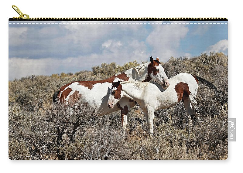 Horses Carry-all Pouch featuring the photograph Affection In The Wild by Athena Mckinzie