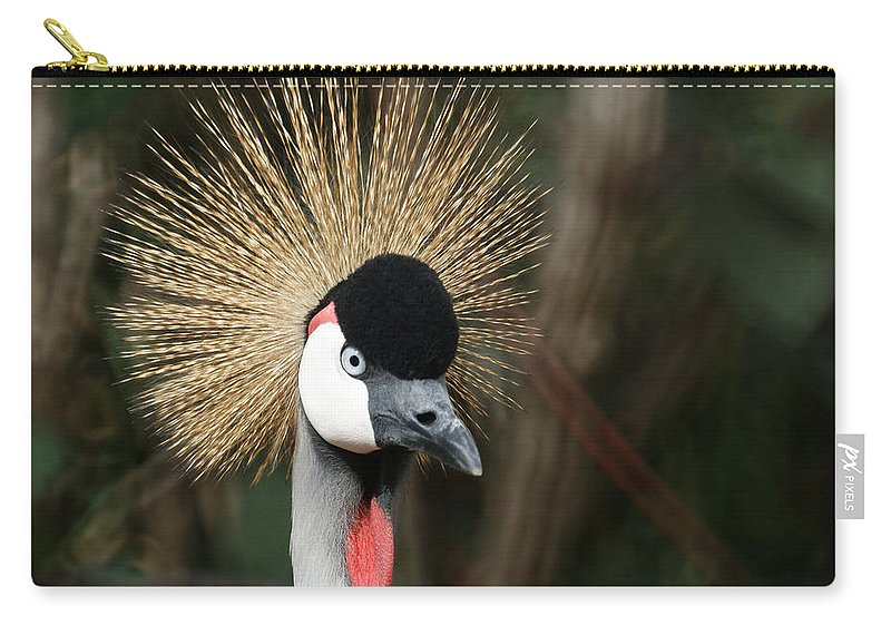 African Crowned Crane Carry-all Pouch featuring the photograph African Crowned Crane 1 by Ernie Echols
