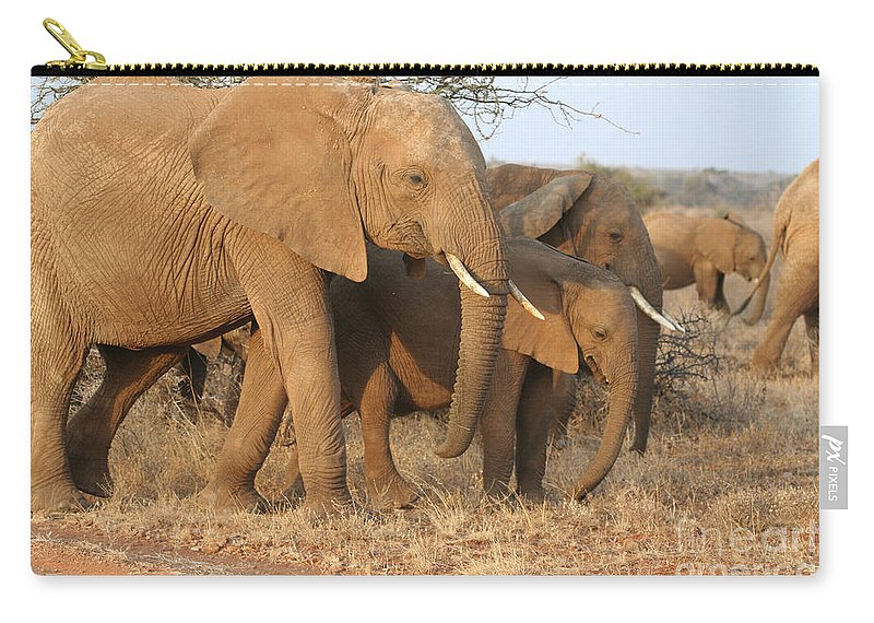 African Elephant Carry-all Pouch featuring the photograph African Elephants by Liz Leyden