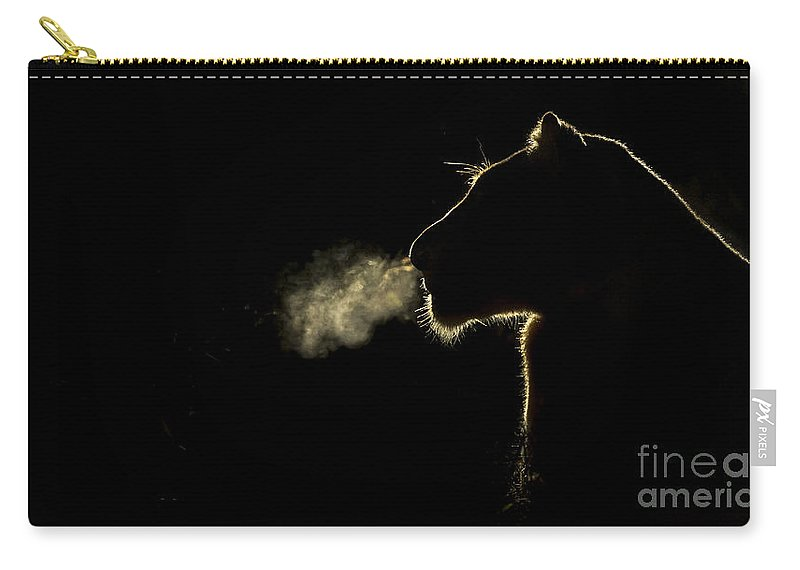 Nis Carry-all Pouch featuring the photograph African Lioness Breath Sabi Sands South by Brendon Cremer