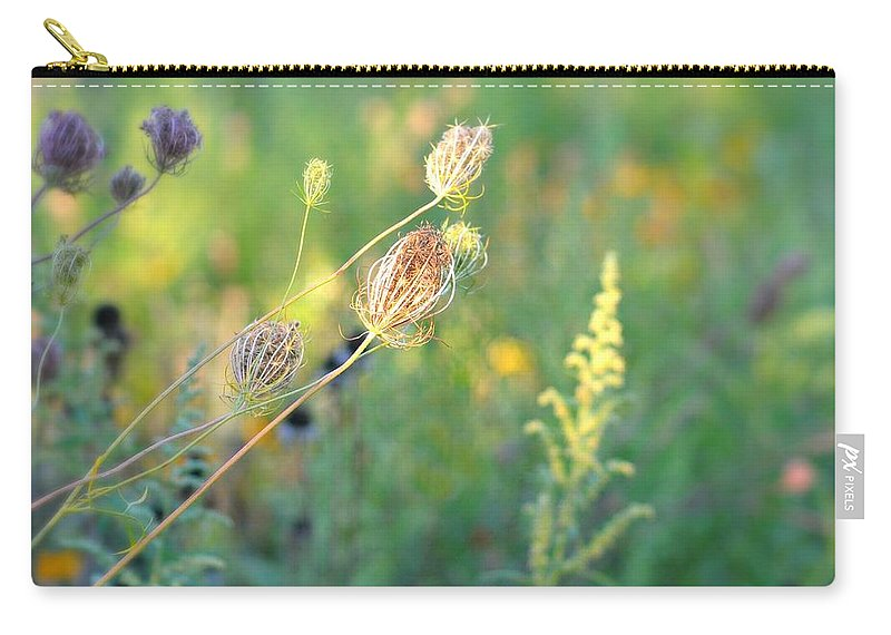 Flowers Carry-all Pouch featuring the photograph After August by Diana Angstadt