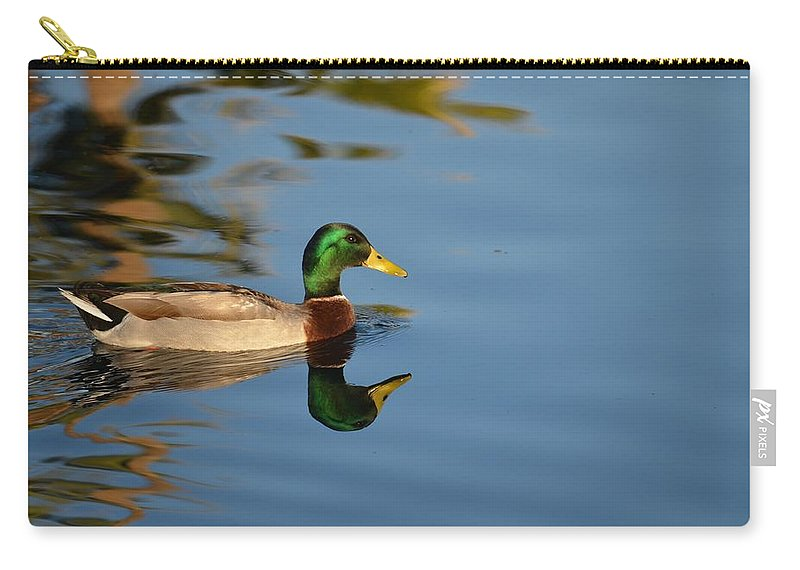 Mallard Carry-all Pouch featuring the photograph Afternoon Solitude by Deb Halloran