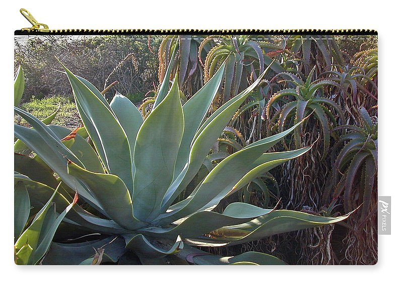 Agave Carry-all Pouch featuring the photograph Agave At Sunset by Douglas Barnett