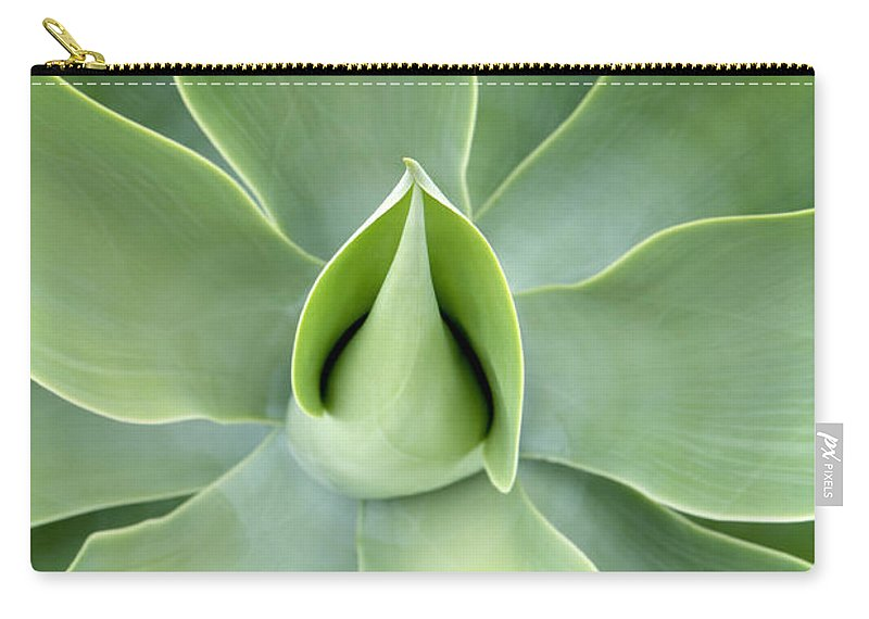 Agave Carry-all Pouch featuring the photograph Agave by Neil Overy