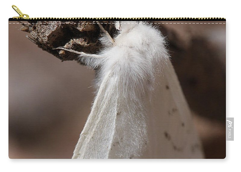 Agreeable Tiger Moth Carry-all Pouch featuring the photograph Agreeable Tiger Moth by Daniel Reed