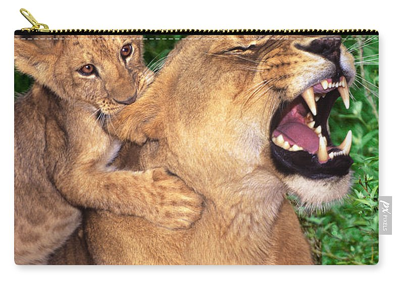 African Lions Carry-all Pouch featuring the photograph Ah Being A Mother Is Wonderful African Lions Wildlife Rescue by Dave Welling