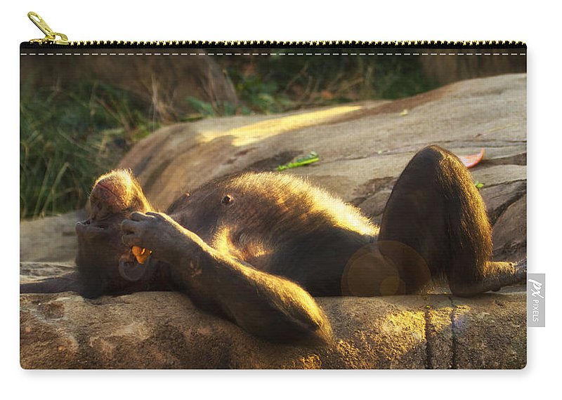 Chimp Carry-all Pouch featuring the photograph Ahhh The Life  by Linda Tiepelman