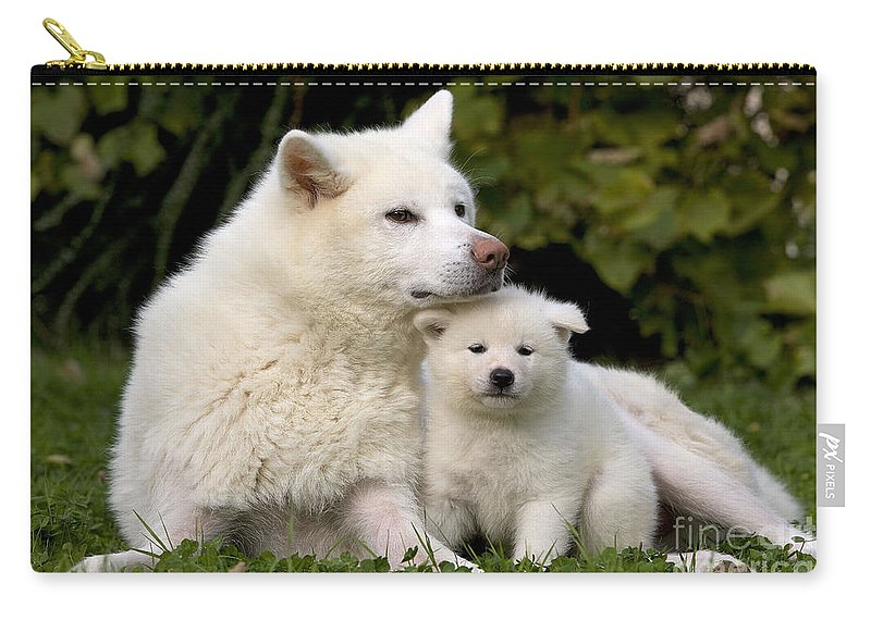 Akita Inu Dog And Puppy Carry All Pouch For Sale By Jean Michel Labat