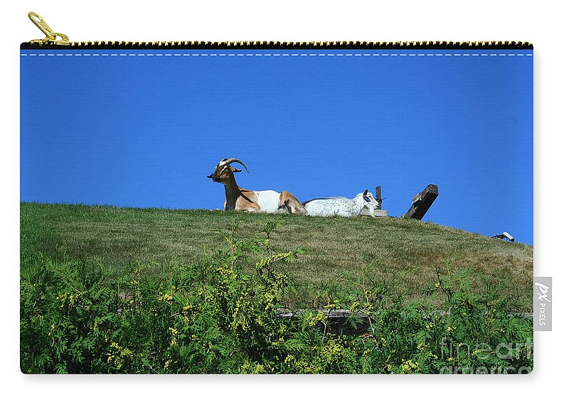 Al Johnsons Carry-all Pouch featuring the photograph Al Johnsons Resturant Goats by Tommy Anderson