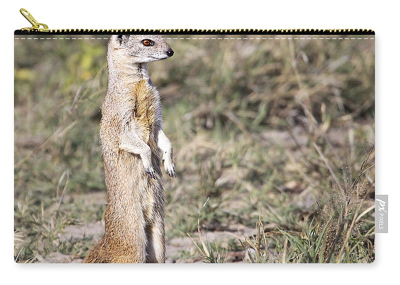 Yellow Mongoose Carry-all Pouch featuring the photograph Alert Yellow Mongoose by Liz Leyden