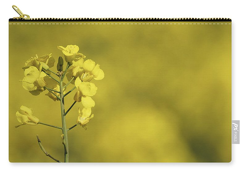 Rapeseed Carry-all Pouch featuring the photograph All Across The Land 6 by Wendy Wilton