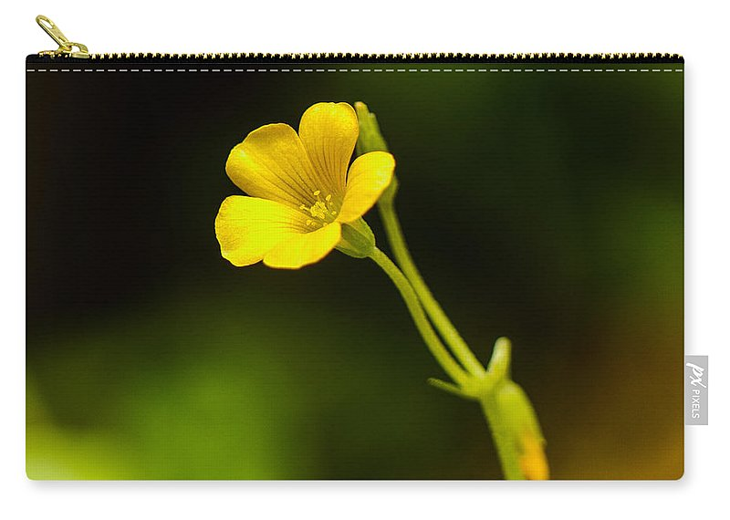 Yellow Carry-all Pouch featuring the photograph All Alone by Ken Kobe