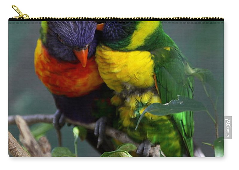Lory Carry-all Pouch featuring the photograph All I Want Is You by Christiane Schulze Art And Photography