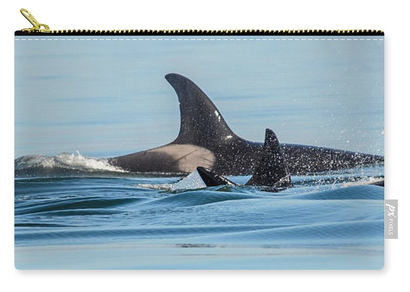 Orca Carry-all Pouch featuring the photograph All In The Family by Roxy Hurtubise