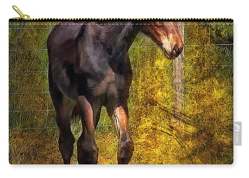 Horse Carry-all Pouch featuring the photograph All Legs And Attitude by Steve Harrington