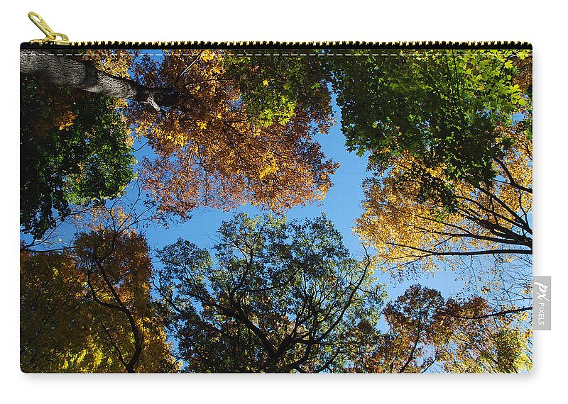 Tree Carry-all Pouch featuring the photograph All The Trees Of The Forest by Richard Bryce and Family