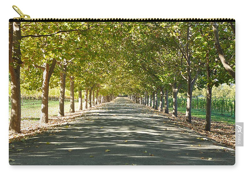 Green Carry-all Pouch featuring the photograph Alley Of Trees On A Summer Day by Brandon Bourdages