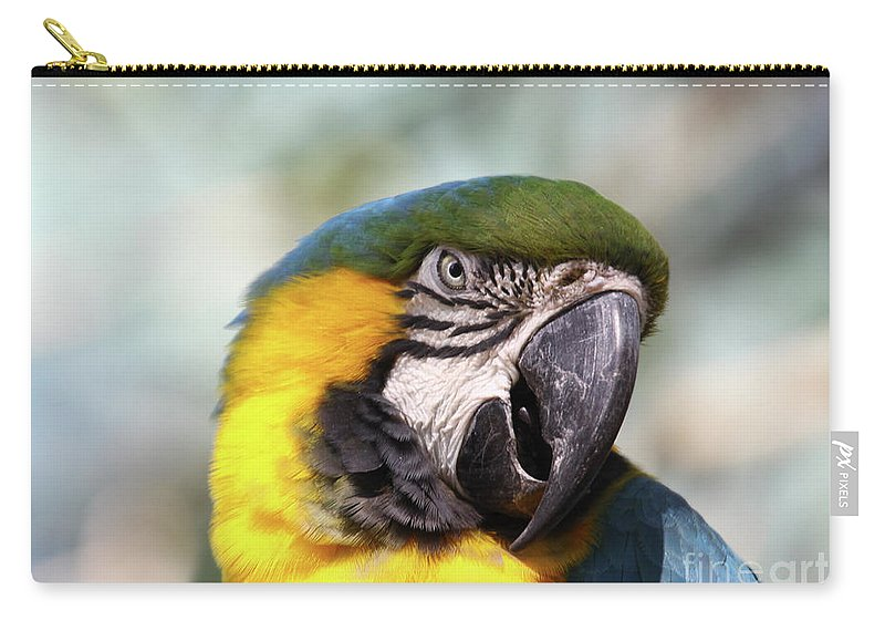 Macaw Carry-all Pouch featuring the photograph Alligator Farm Resident by Deborah Benoit