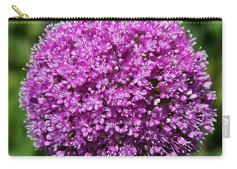 Allium Carry-all Pouch featuring the photograph Allium Globe by Christiane Schulze Art And Photography