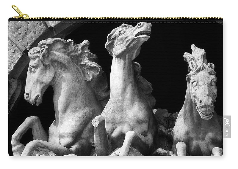 Sculpture Carry-all Pouch featuring the pyrography Almost Perfect by RC DeWinter