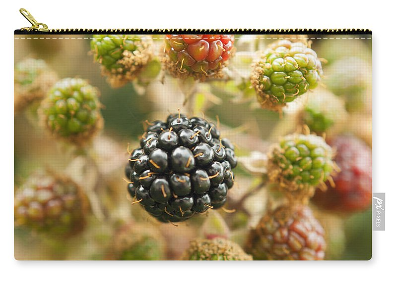 Beeren Carry-all Pouch featuring the photograph Almost Ready by Miguel Winterpacht