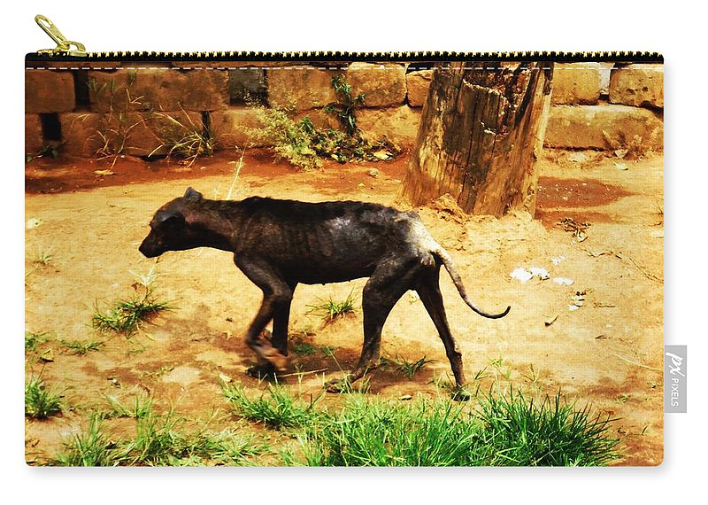 Dog Carry-all Pouch featuring the photograph Alone And Starving by Tuntufye Abel